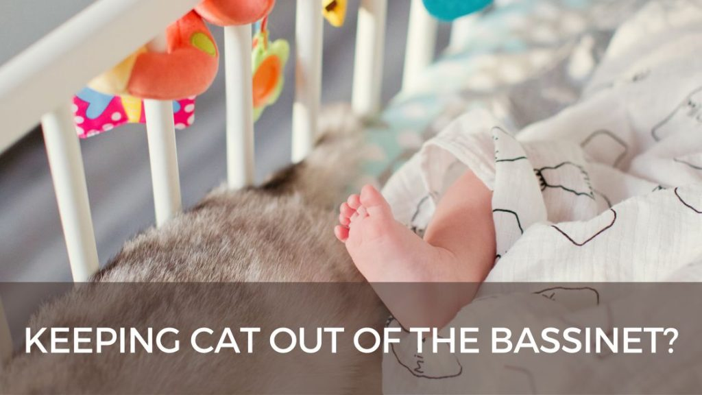 How to keep cat out of bassinet